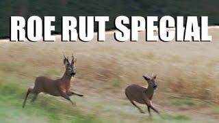 Fieldsports Britain – Roebuck stalking / hunting special (episode 140)