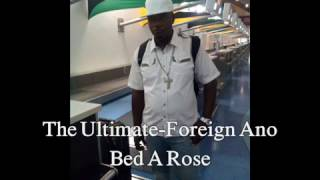 The Ultimate Foreign Ano Bed A Rose