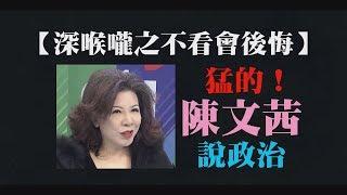 【深喉嚨之不看會後悔】聽陳文茜怎麼說政治!