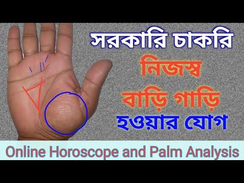 online Palm reading service | house & car own, govt job | Astrology