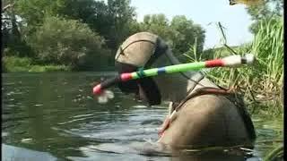 Рыбалка в орловской области на реке