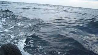 ホンダ2馬力+ゴムボート走行シーン 二人乗り 波あり (対馬東海岸)