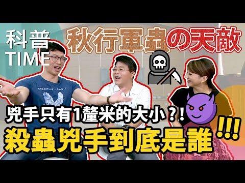 【科普TIME】Ke Pu TIME 秋行軍蟲的天敵 兇手只有1釐米的大小?!EP.12
