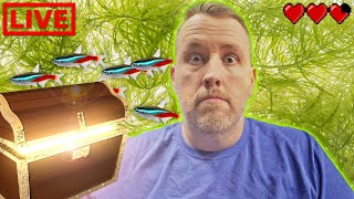These 3 Aquarium Discoveries Changed My Hobby [Live Stream] by Aquarium Co-Op