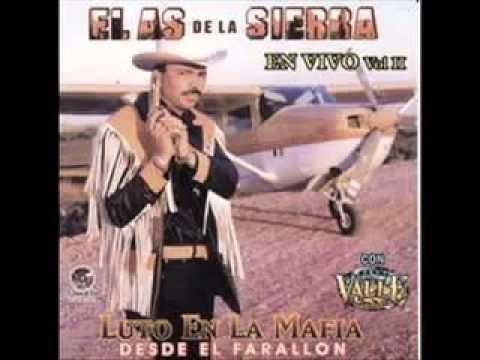 El Guero Palma (Audio)
