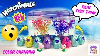 Hatchimals Season 5 Mermal Magic Color Changing DIY Aquarium Fish Tank