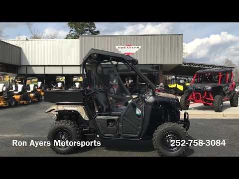 2020 Honda Pioneer 500 in Greenville, North Carolina - Video 1