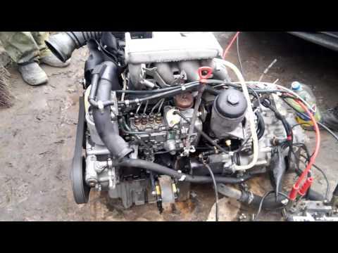 Kinder- pitbajk auf dem Benzin mit der mechanischen Getriebe zu kaufen