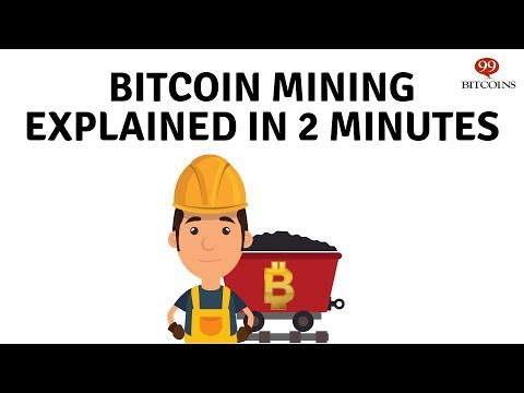 Bitcoin žaibo tinklo mazgo pelnas