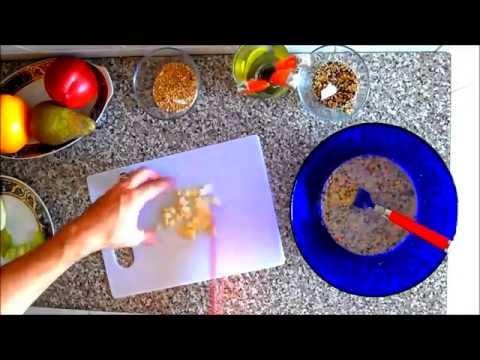 galletas de frutas y semillas para periquitos canarios inseparables ninfas ... pajaros