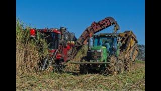 Case 8800 Sugar Cane Harvester Knockin It Down! 4K Drone Video