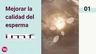 Mejorar la calidad del esperma - Instituto Madrileño de Fertilidad