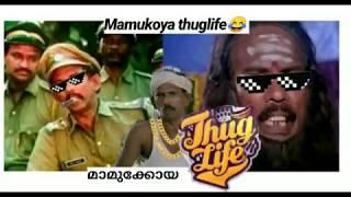 mamukoya thug life 😂 mamukoya comedy part 2