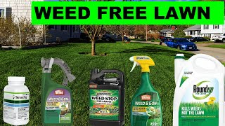 How To Kill All The Weeds In Your Lawn In 2020