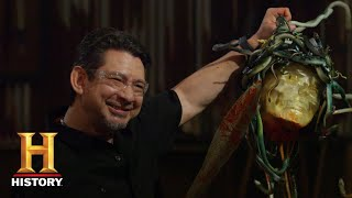 Forged in Fire: Sword of Perseus BEHEADS MEDUSA in Final Round (Season 7) | History