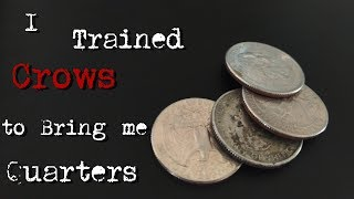 """""""I Trained Crows To Bring Me Quarters"""" Creepypasta"""