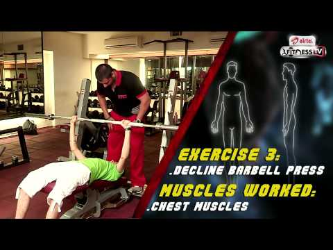 What's your body type Ectomorph Workout