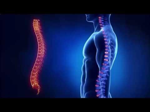 Болит правый бок внизу живота и спина болит сильно