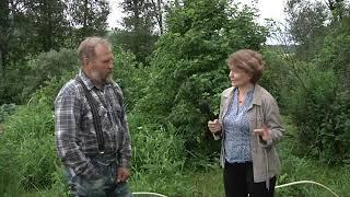 Пчеловод Катенёв Вячеслав Юрьевич - интервью