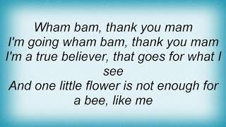 Aqua - Bumble Bees Lyrics