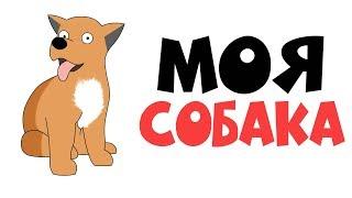 Моя Собака   Анимация