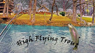 The Best Day I Ever Had Fly Fishing the Guadalupe River for Texas Rainbow Trout 4K