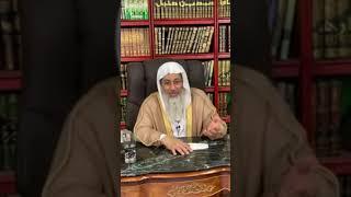 الشيخ مصطفى العدوي - الإمام الألباني رحمه الله يخطئ ويصيب