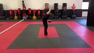 Back leg side kick
