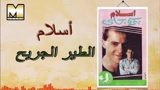 Islam - AlTayr AlGareh / اسلام - الطير الجريح تحميل MP3