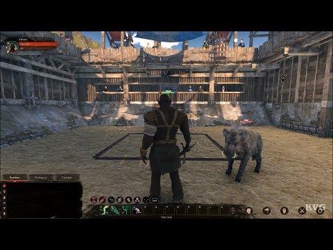Gameplay de Blackthorn Arena