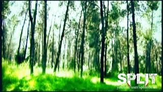 Сплит:Тайна Крови, Split 2 - Trailer