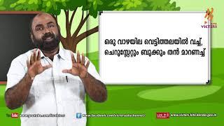 Standard 4 | Malayalam | Class – 09