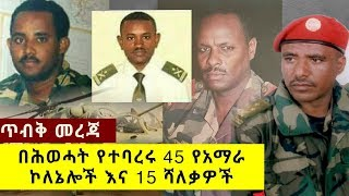 EXPOSED: 45 Amhara Colonels fired by TPLF