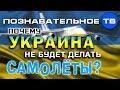 Почему Украина не будет делать самолёты? (Познавательное ТВ, Артём Войт...