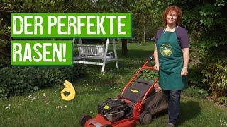 Pflegetipps für einen gesunden, grünen Rasen - Der Grüne Tipp
