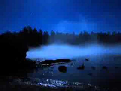 Звуки дождя и сверчков