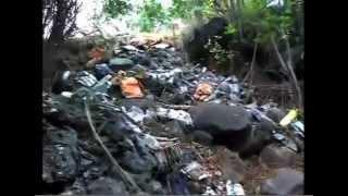 preview picture of video 'Décharge sauvage chemin Lancastel à Saint Leu (97436)'