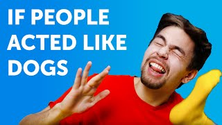 IF PEOPLE ACTED LIKE DOGS. How weird would it be?    Comedy by 5-Minute FUN