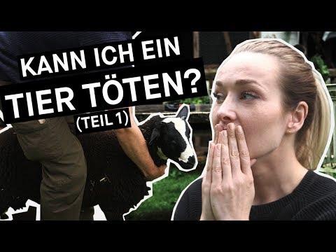 Sex porn frei Pferd Tiere