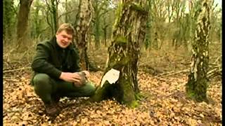 preview picture of video 'Ray Mears Eating'