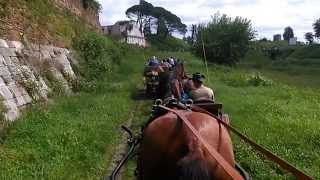 preview picture of video 'In Carrozza lungo i Bastioni di Palmanova Associazione Friulana Appassionati Carrozze'