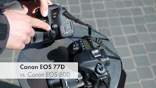 Canon EOS 77D vs. Canon EOS 80D   Duell in der gehobenen Einsteigerklasse [Deutsch]