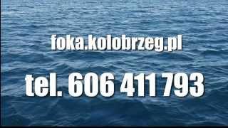 preview picture of video 'Rejsy na dorsza FOKA-S Kołobrzeg, Wędkarstwo Morskie'