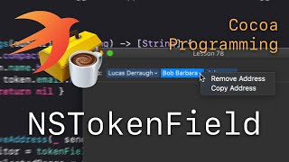 Cocoa Programming L78 - NSTokenField