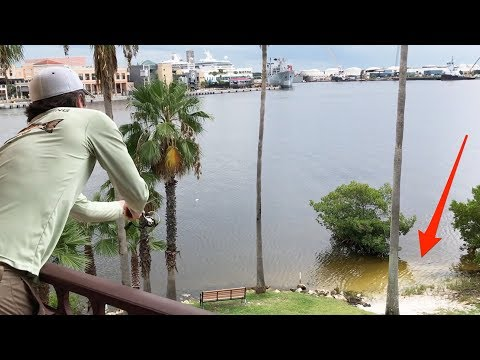 Веселая рыбалка с балкона 3-го этажа