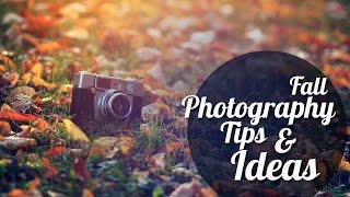 Fall Photography Tips And Ideas