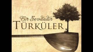 Bir Sevdadır Türküler - Mektebin Bacaları (2014)