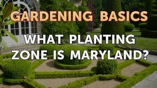What Planting Zone Is Maryland?