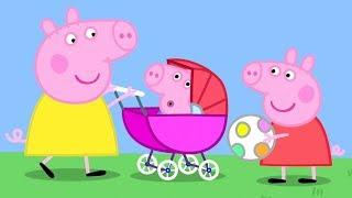 Świnka Peppa | Mała Świnka | Bajki Po Polsku | Peppa po Polsku