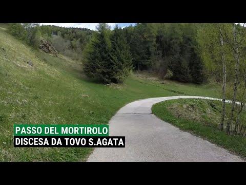 Valtellina MTB: La discesa dal Passo del Mortirolo